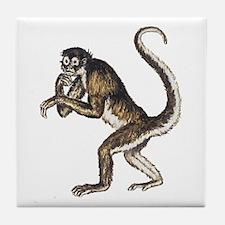Spider Monkey Tile Coaster