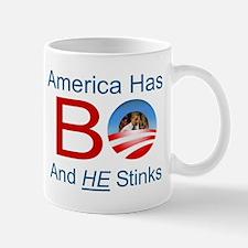 America has a BO problem Mug