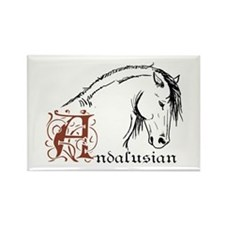 Andalusian Horse Rectangle Magnet