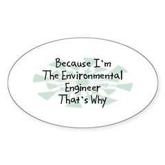 Because Environmental Engineer Oval Decal