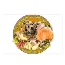 DDB Thanksgiving Postcards (Package of 8)