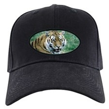 """Resting Tiger - B3"" Baseball Hat"
