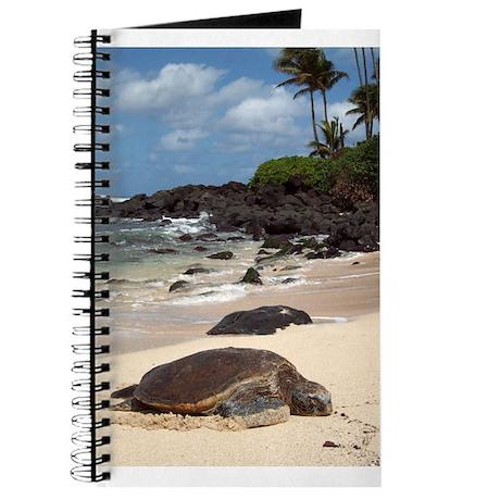 Sea Turtle Beach Journal
