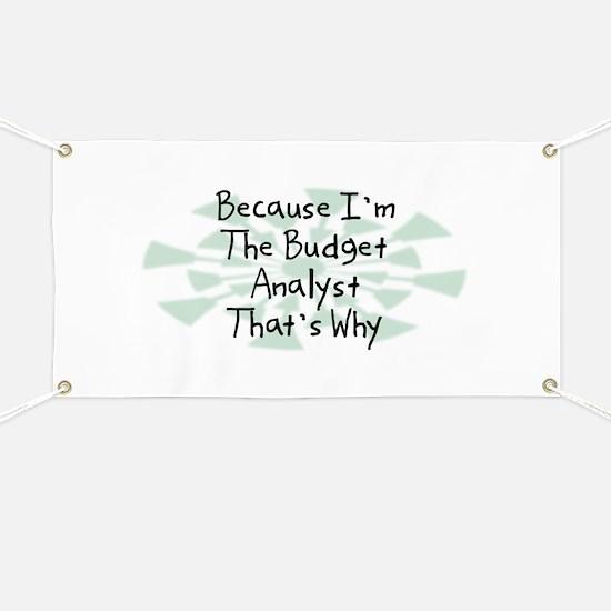 Because Budget Analyst Banner