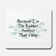 Because Budget Analyst Mousepad