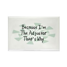 Because Adjustor Rectangle Magnet