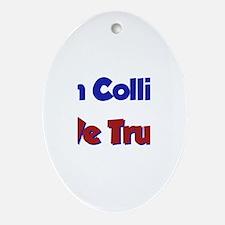 In Collin We Trust Oval Ornament