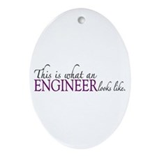What an ENGINEER Looks Like Oval Ornament