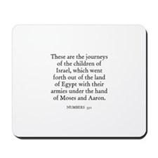NUMBERS  33:1 Mousepad
