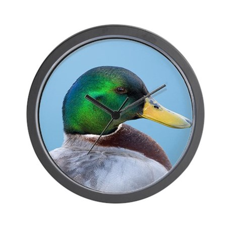 Mallard Portrait Wall Clock