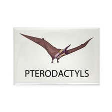 Pterodactyls Rectangle Magnet