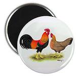 Leghorns Rooster & Hen Magnet
