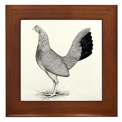 Grey American Game Hen Framed Tile