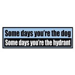 Some days you're the dog, Some days you're the...