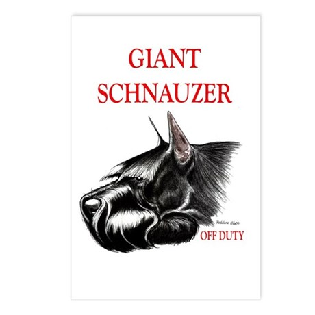 giant schnauzer off duty Postcards (Package of 8)