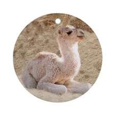 BABY CAMEL Ornament (Round)