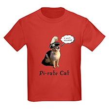 Pi-rate cat T