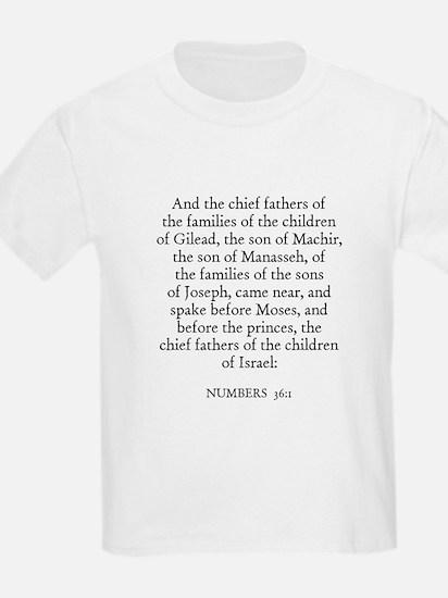 NUMBERS  36:1 Kids T-Shirt