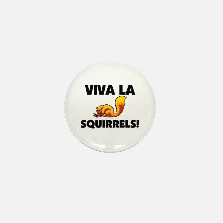 Viva La Squirrels Mini Button