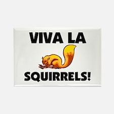 Viva La Squirrels Rectangle Magnet