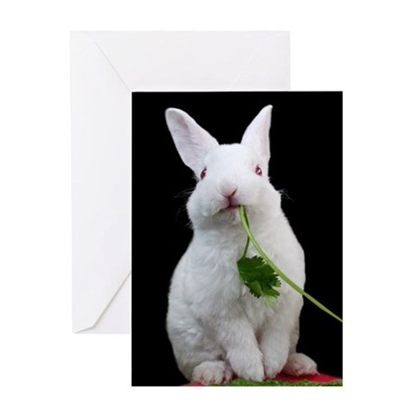 Baby Bunny Easter Greeting Card