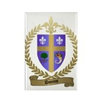 DIONNE Family Crest Rectangle Magnet