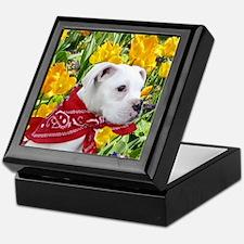 Easter boxer puppy Keepsake Box