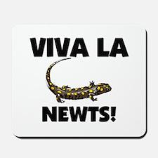Viva La Newts Mousepad