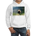 Alaska Scene 23 Hooded Sweatshirt
