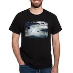 Alaska Scene 22 Dark T-Shirt