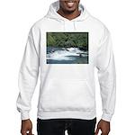 Alaska Scene 21 Hooded Sweatshirt