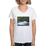 Alaska Scene 21 Women's V-Neck T-Shirt