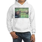 Alaska Scene 20 Hooded Sweatshirt