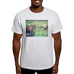 Alaska Scene 20 Light T-Shirt