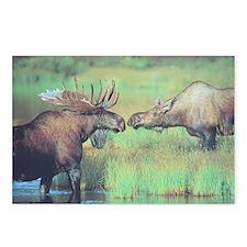Alaska Scene 20 Postcards (Package of 8)
