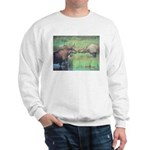 Alaska Scene 20 Sweatshirt