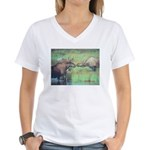 Alaska Scene 20 Women's V-Neck T-Shirt