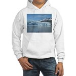 Alaska Scene 18 Hooded Sweatshirt