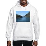 Alaska Scene 17 Hooded Sweatshirt