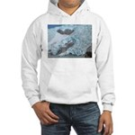 Alaska Scene 16 Hooded Sweatshirt