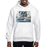 Alaska Scene 13 Hooded Sweatshirt