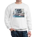 Alaska Scene 13 Sweatshirt
