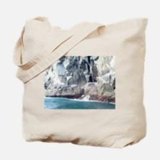 Alaska Scene 13 Tote Bag
