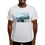 Alaska Scene 12 Light T-Shirt