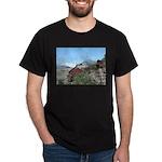 Alaska Scene 5 Dark T-Shirt