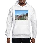 Alaska Scene 5 Hooded Sweatshirt