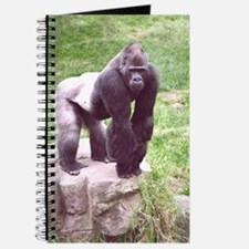 Young Silverback on Rock Journal