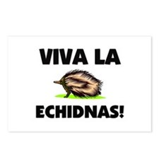 Viva La Echidnas Postcards (Package of 8)