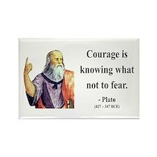 Plato 20 Rectangle Magnet