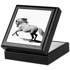 Cute Black horse Keepsake Box
